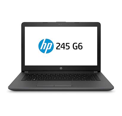 HP 245 G6 (5LR52PA) Laptop ( AMD Dual Core A9/ 4 GB RAM/ 1 TB HDD/ DOS/ 14-inch Screen/ 1.85 Kg/ No DVD)