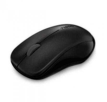 rapoo wireless optical mouse 1620